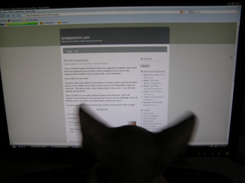 This is Max looking at Bradaptation.  It's blurry because he kept squirming.