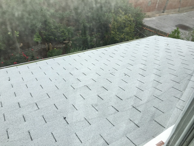 Yay for non-leaking shingles!