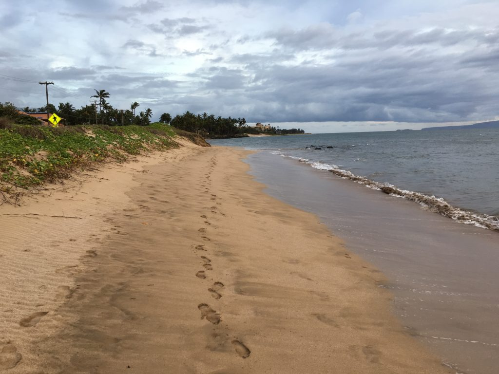 I have such a nice beach for walking.