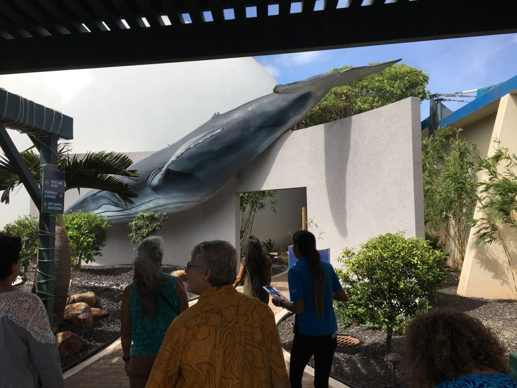 This is the entrance to the new whale movie.  It was 3-D.